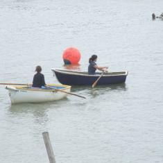 Ladies Rowing Race - 2011 | Photo - Mike Downes