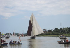 Wivenhoe Regattas