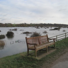 Flooding 6th December 2013, the marshland completely submerged.