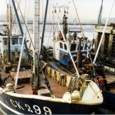 Fishing Boats Northsea Canners Quay