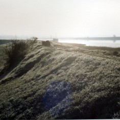 The marsh to the east of Wivenhoe | Mike Downes
