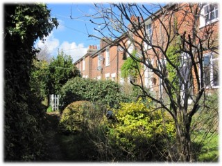 South facing frontages of Denton's Terrace | Sue Glasspool