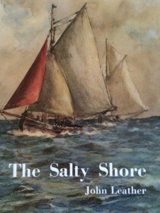 The Salty Shore | Book Jacket