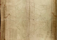 1799 Survey Map of Wivenhoe (1)