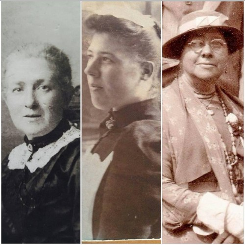 Wivenhoe Families