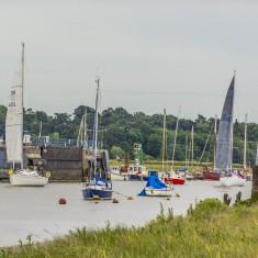 Wivenhoe Regatta - 9th July 2016