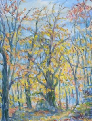 Oak Tree (woods in Vosges) | Gisela Langsdorff