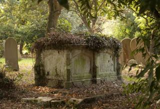 The Sanford Family Grave