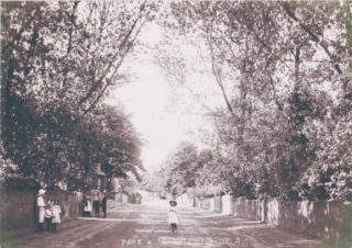 Park Road in 1906 | Wivenhoe Memories Collection
