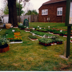 Wivenhoe Trade Fair held on Sunday 12th May 1996 in the William Loveless Hall | Photos loaned by Mrs Carol Green