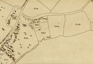 Image Three: Extract from 1838 Tithe Award Map of Wivenhoe showing Parcels 292-298 of the Wivenhoe House Estate. | Essex Record Office D/CT 406B