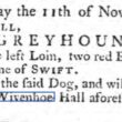 Nicholas Corsellis' Lost Greyhound 'Swift' 1764