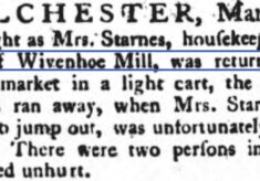 Mrs. Starnes, Housekeeper to Mr. Patrick of Wivenhoe Mill 1788