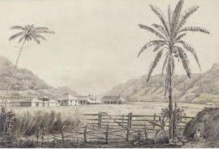 An impression of a Jamaican plantation  | Jamaica Planters/Plantations Portal